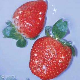 是草莓呀!还是会闪闪发光的草莓呀!
