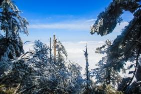东游瓦屋山,进入一片冰雪世界简直不要太美丽!