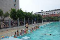 望子成龙 游泳池里的那些孩子们