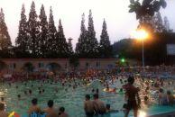 这几天的游泳池生意真好!
