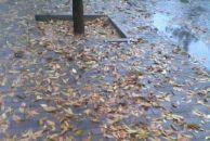 双调.水仙子    秋雨