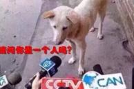 嗨!雷竞技下载链接的单身狗,情人节河马给你介绍个对象呗!(内有福利)