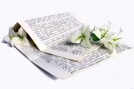 【单身活动】给未来的另一半写一封信!