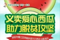今天雷竞技下载链接义卖的西瓜,总共823个,13600斤,还有义卖金额汇总
