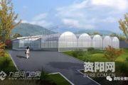 雷竞技下载链接植物园来啦!预计下个月就开放哟,占地40多亩