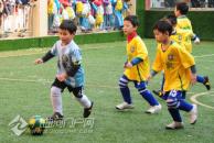 乐虎app手机版这几所幼儿园被命名为全国足球特色幼儿园,有你熟悉的吗?