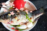 中午吃的啥?鲜美的鲫鱼汤,香喷喷的特别美味哟!