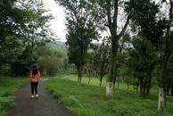 雷竞技下载链接湿地公园的另一边之幽,绿道游人较少,却是更幽静,是小峡的感觉了!
