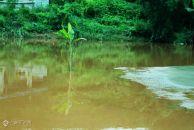 雷竞技下载链接字库山黄泥河, 黄泥河流经字库山,形成了美丽的山水公园!