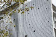 雷竞技下载链接老人民医院的外墙上爬着植物,从夹缝中生长出来,这是多么顽强的生命力啊!