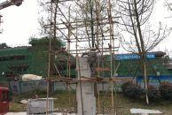 """雷竞技下载链接凤岭公园新雕塑""""有凤来仪""""旁的8根景观柱正在修建中,约8米高!"""