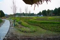 时隔半年再走18新利官方下载阳化河,生态花园已经快要建成,很有乡村的特色!(多图+视频)