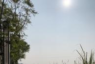 沱江边走走停停,今天出太阳了,真是太巴适了!