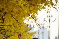 【晒18新利官方下载银杏】小北街打卡第二季,美景要有美女配,棒棒的!