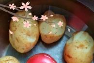 热情邻居送的土豆,我把它拿来炖了牛肉,味道巴适得板