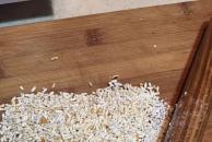 今天在网上看到个粉蒸排骨菜谱,于是试一试双十二河马商城抢到的蒸锅!