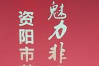 在雷竞技下载链接三贤公园偶遇剪纸展,快来了解下非遗雷竞技下载链接东峰剪纸吧!