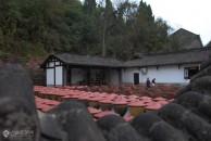 参观了雷竞技下载链接临江寺豆瓣厂后,每天中餐、晚餐都吃,真真正正感受到临江寺豆瓣下干饭的魅力!