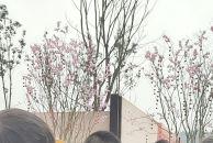 上百人集结雷竞技下载链接朗基香樾府讨薪,我们农民工苦啊!