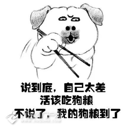 资阳2019春季野炊脱单派对圆满结束:遇见对的人就要积极主动!