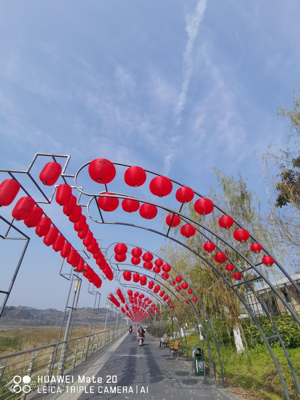 资阳沱江边打造了美景,有挂满红灯笼的拱型长廊,还有一片美丽的芦苇荡! ...