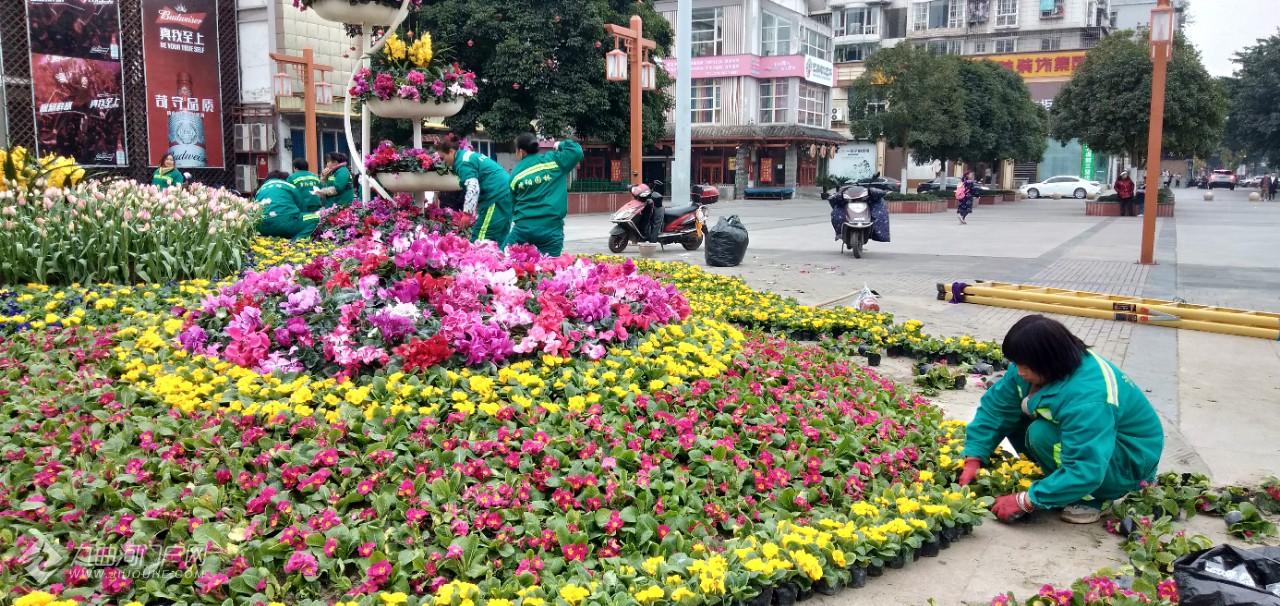 资阳三贤公园牌坊前正在加班加点地摆放新年装饰,辛勤的园丁造就城市的春天! ...