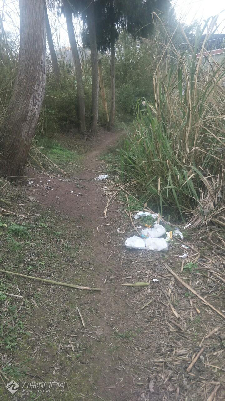 资阳宝台镇清水滴水村11社的农村垃圾该如何处理?丢的到处都是,太多了! ...