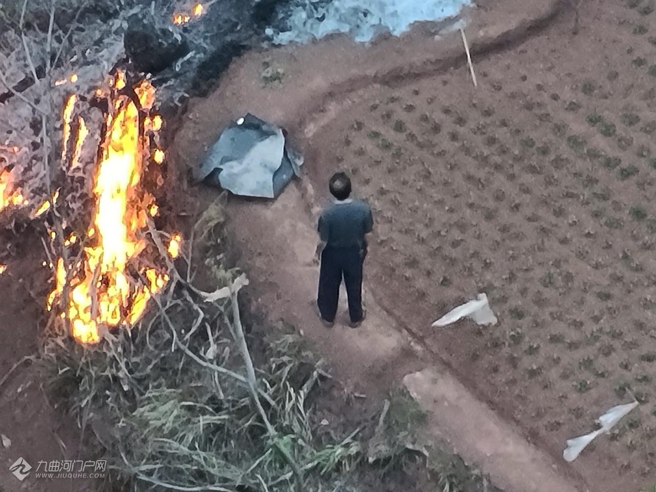 突发!资阳博雅锦苑背后的山上燃起了大火……