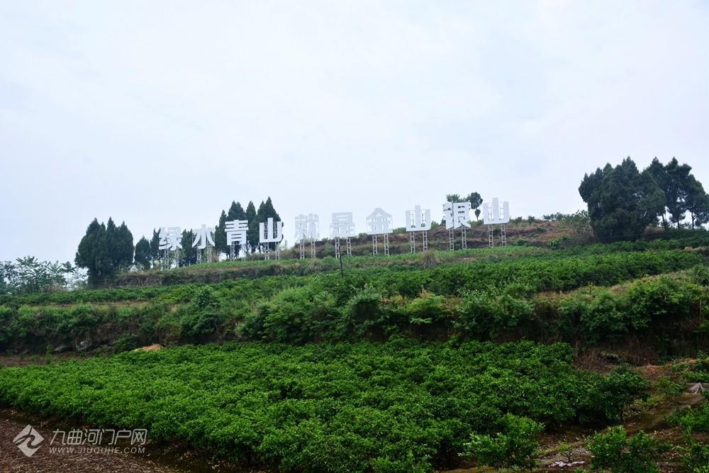 """以""""水肥一体化示范区""""加农业主题公园的新村即将建成"""