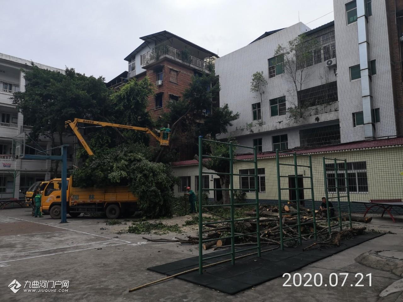 """(多图)记录资阳雁江一小""""神速""""机械工程,不分早晚一直在建设,城区内用挖挖机太不方便!"""