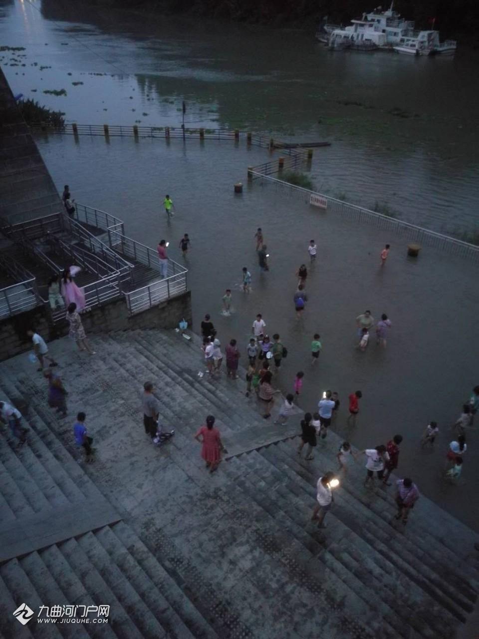 资阳沱三桥渡船码头变天然游泳池了?简直可以摸鱼了哈!