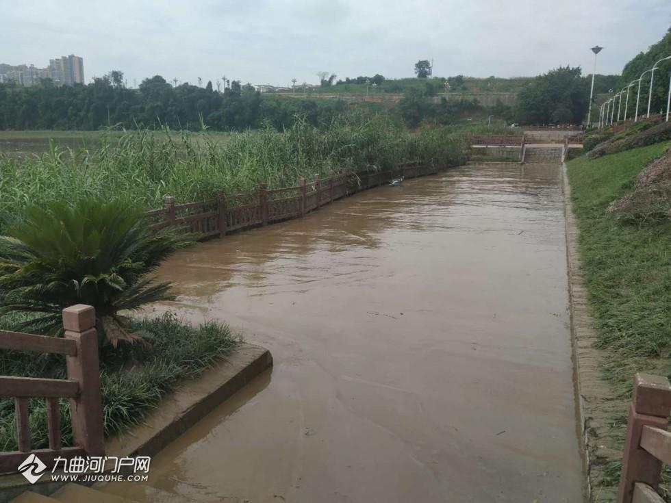 洪水退去,资阳环卫快速清淤还市民美丽江堤!