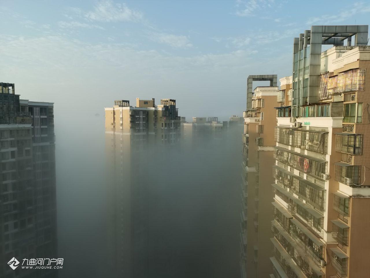 雾锁雁江,早晨站在楼顶已经看不到奔流不息的资阳沱江!
