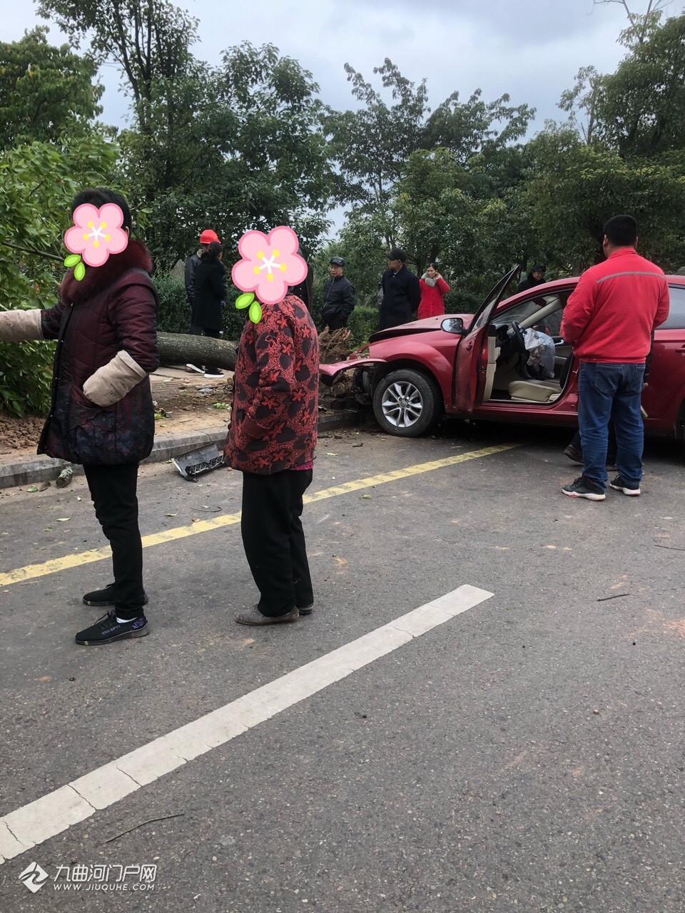 资阳中交锦湾营销中心外面发生车祸!把树都撞断了!