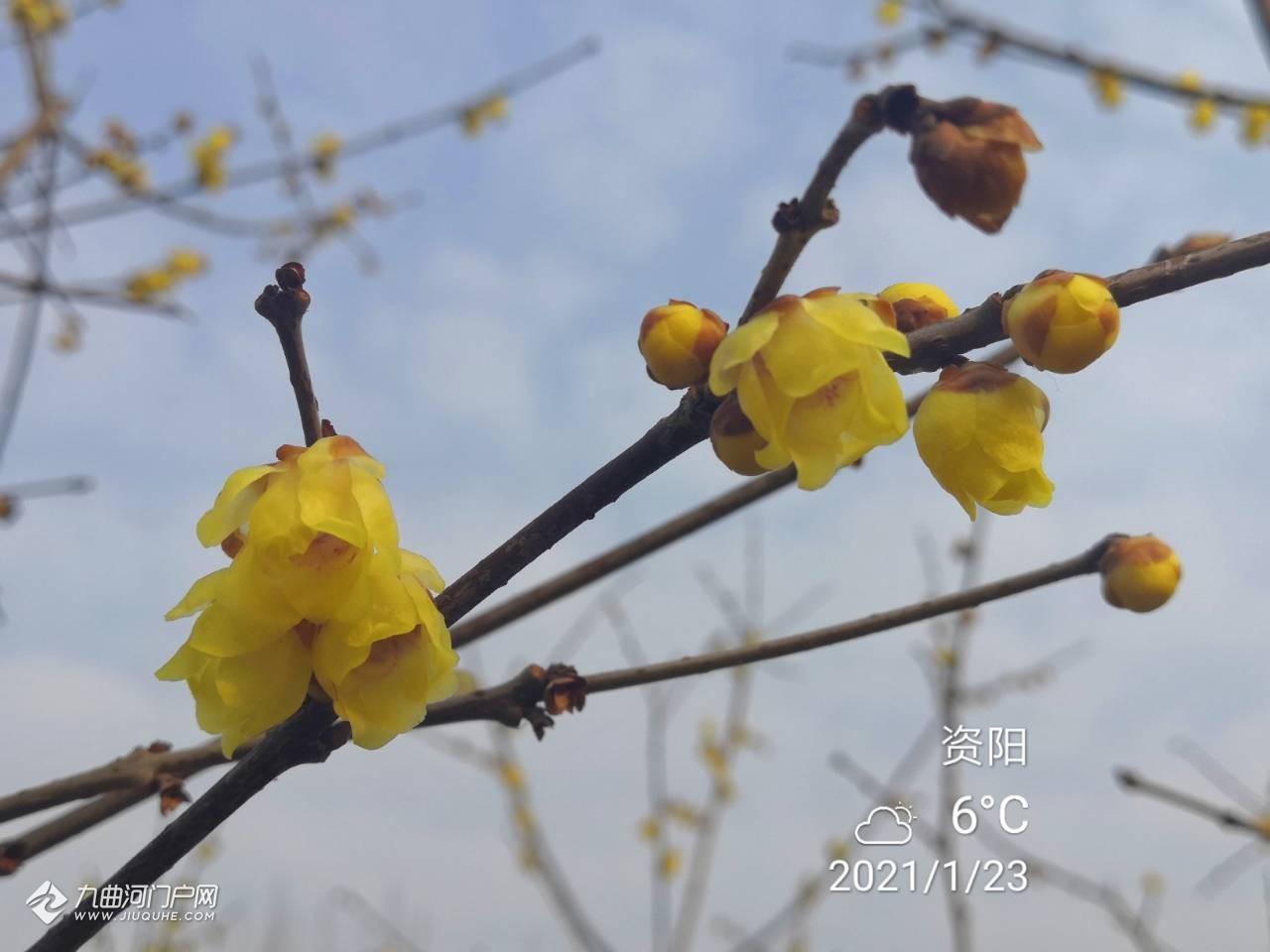 想把照片送给爱生活的中国大妈!分享下上周末时光,让这周工作更有动力!