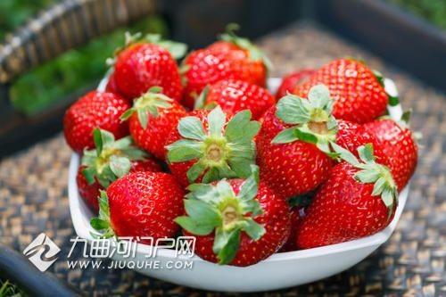 想摘草莓啦!求推荐资阳哪家草莓园又甜又实惠呢?
