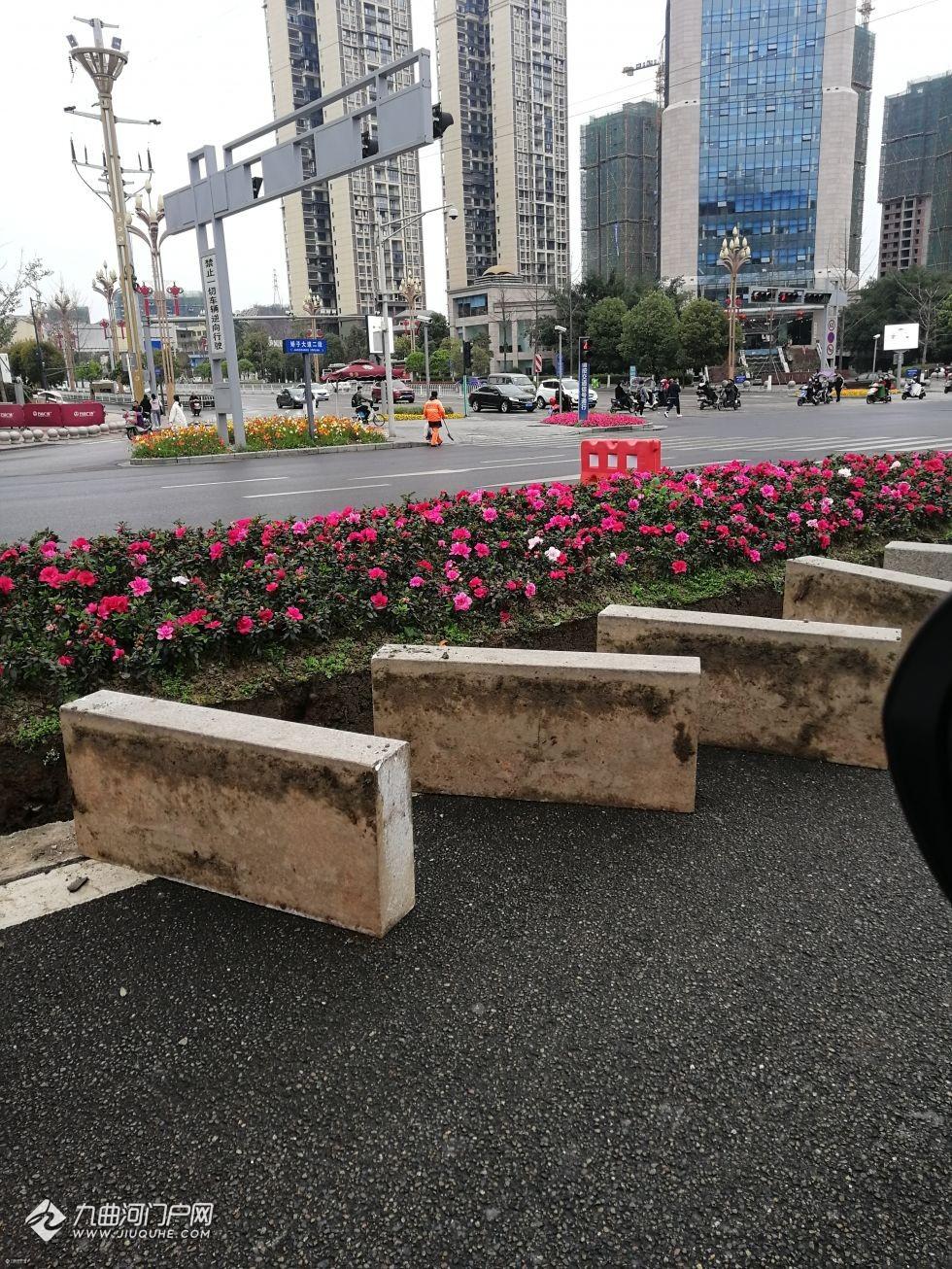 轨道交通资阳线娇子大道站开始施工了,四个出入站口位置都很明确!