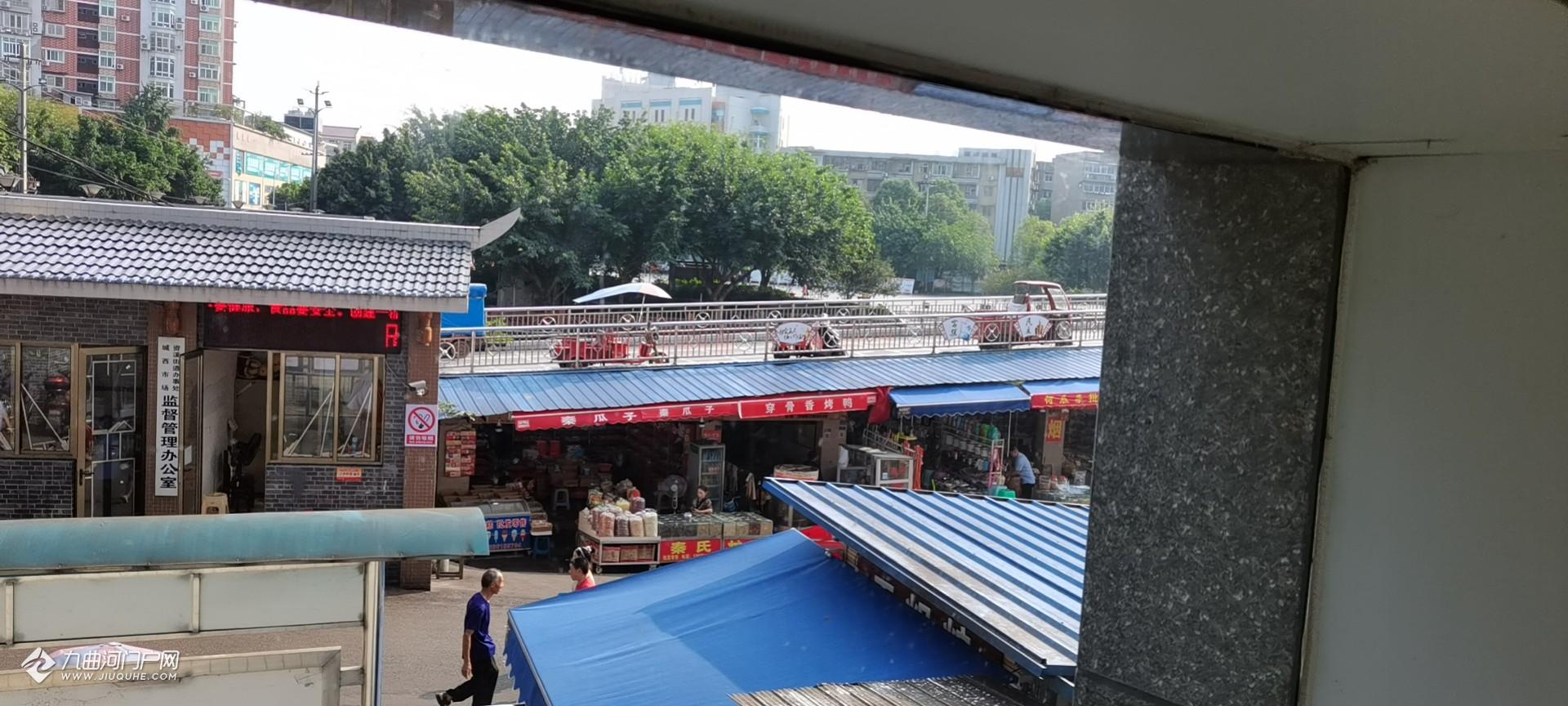 资阳西门桥街突发车祸,三轮车从坡上下来刹不住车撞到了一位婆婆,太危险了!