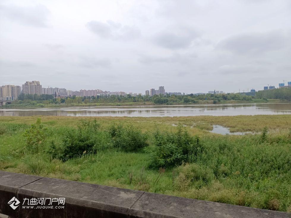 你印象中的资阳沱江河是什么样子的?现如今的沱江河,你喜欢吗?