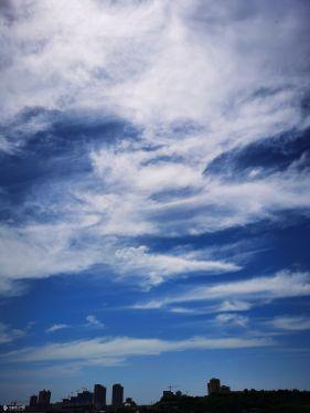 高温橙色预警下的资阳,天气炎热,天空很蓝,大地万物都在太阳的烘烤之中!