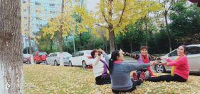 资阳沱东区政府那两排美美的银杏树太美了,好多人来拍照打卡哦!