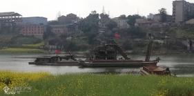 趁着阳光明媚,给大家分享下午游资阳沱江河时的美景!